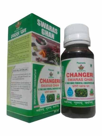 Changeri Swaras Ghan